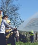 evakuacija-sole-v-smihelu-51
