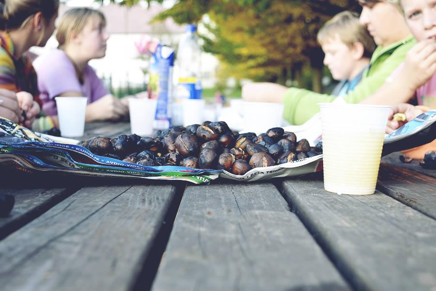 Kostanjev piknik gasilske mladine